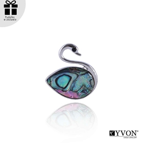 Picture of Broszka z muszli abalone BR03048